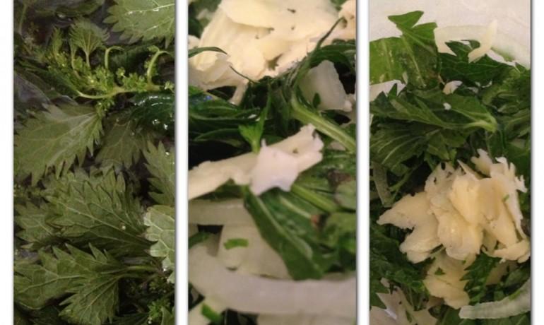 Isırganotu Salatası
