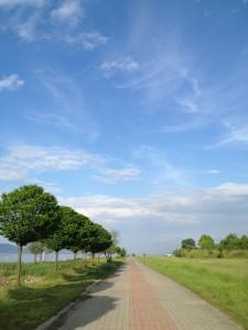 Yol ve perspektif