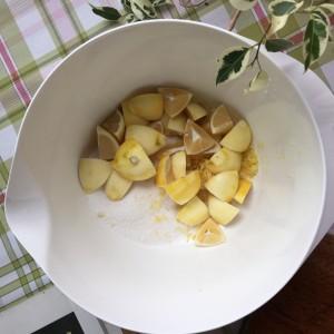 joyofearth-limon (5)